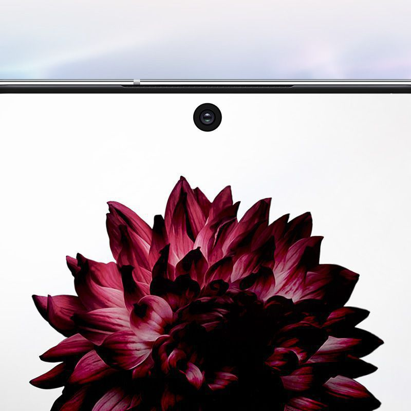 Close-up of Galaxy Note10 +'s cinematic Infinity-O Display with a flower onscreen