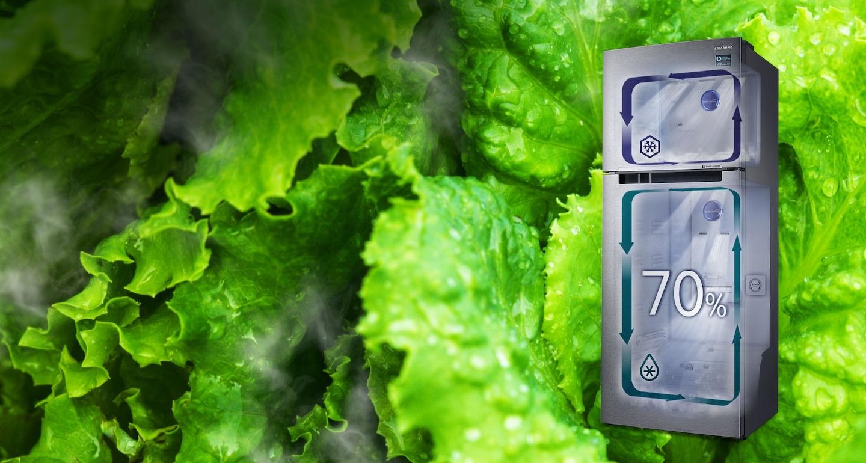 Moisture-Full Freshness all over the fridge