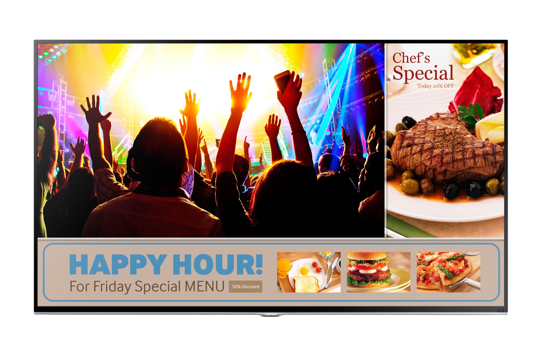 "48"" HD Flat TV RM48 Series 4"