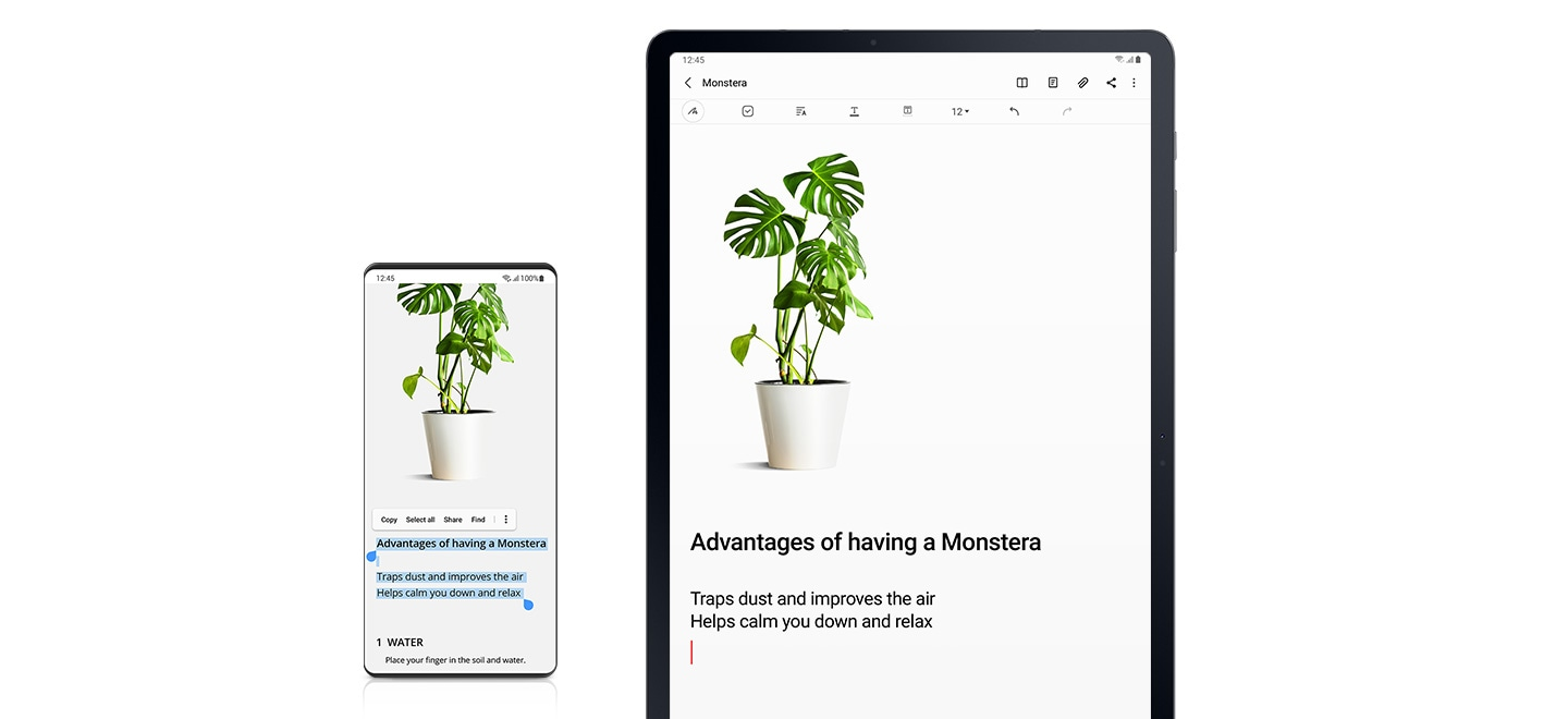 Copy the contents to the plant site on the phone and paste them into samsung note on Galaxy Tab S7+