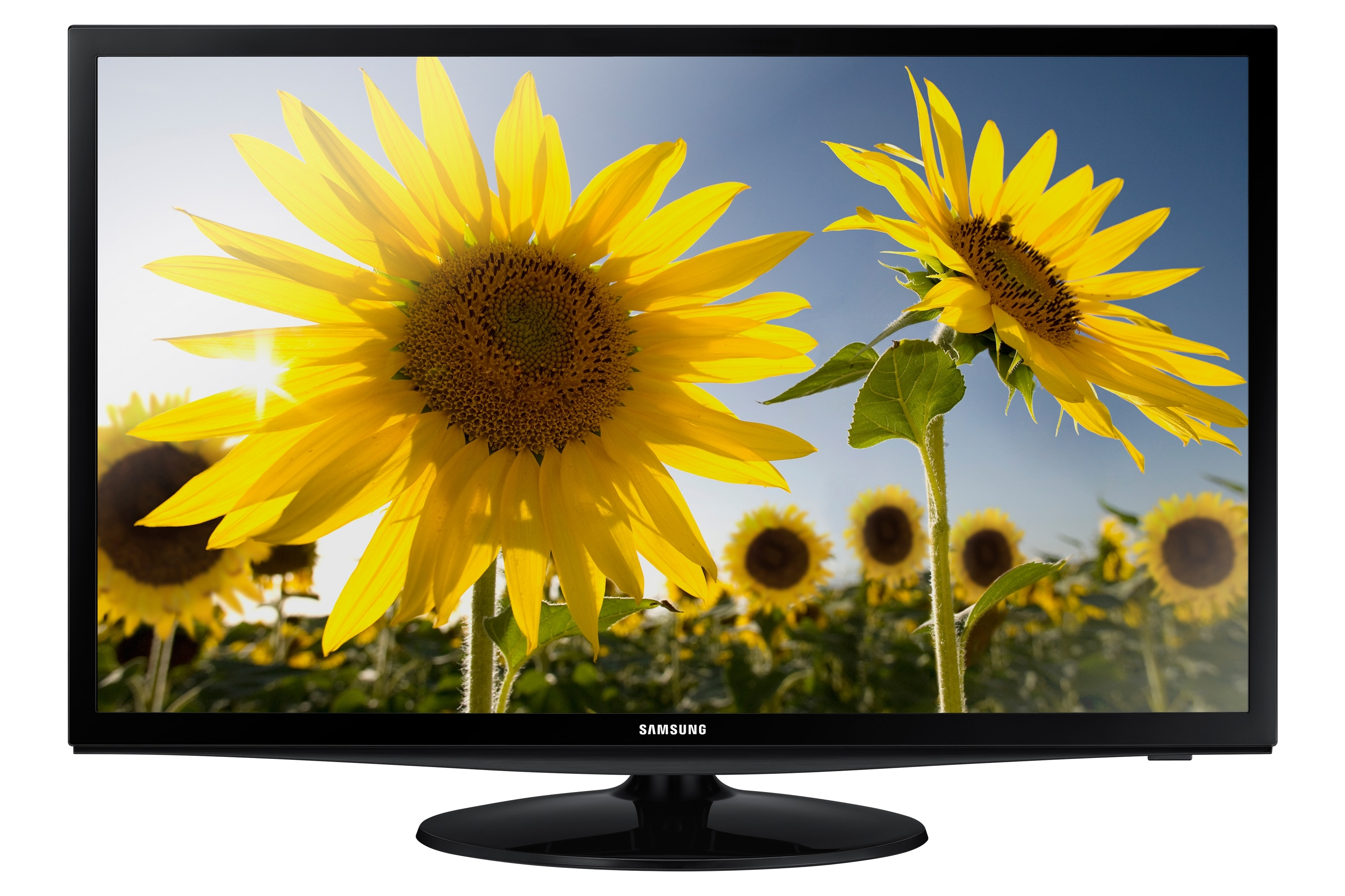 "28"" LED TV Monitor"