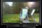 32 TV Monitor  mit flexiblem Montagesystem T32E310EW Vorderseite Schwarz