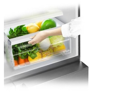 Purify the air and keep food fresh