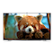 UA65F9000AM Red Panda