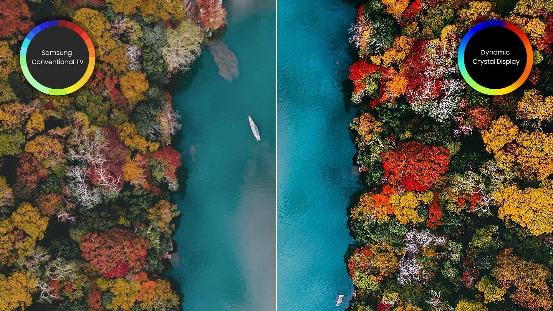 Expresión de colores nítidos y vivos