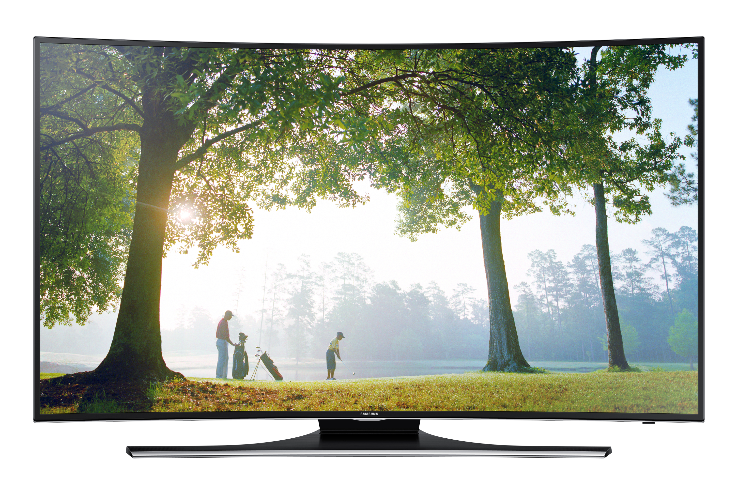 "48"" Full HD Curved Smart TV H6895"
