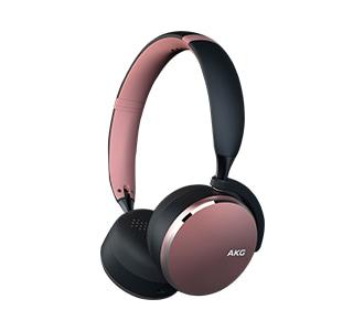 AKG Headphone Y500