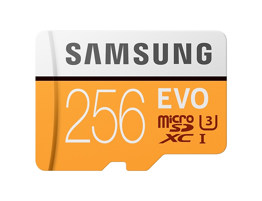 Best 256 GB Micro SD card with EVO Plus technology