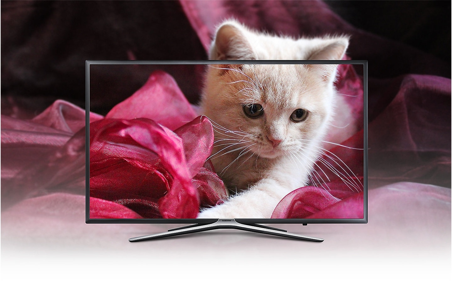 Enriched Viewing Experience with latest 55 inch Full HD LED TV