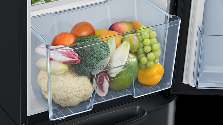 Single Door fridge with Large Capacity Vege box