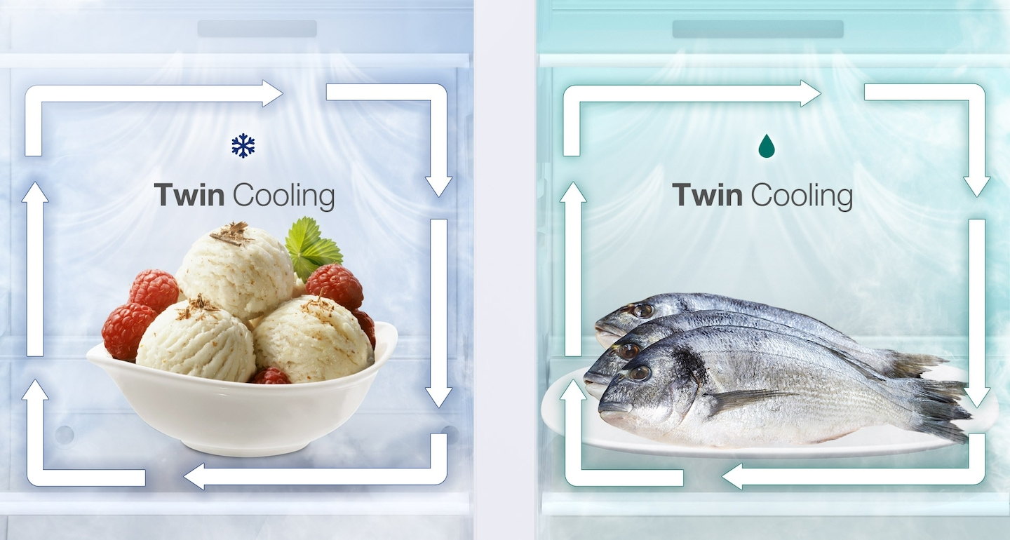 Odor Free Cooling in Samsung Side by Side Fridge