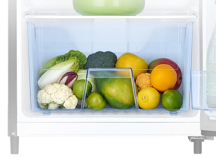 Single Door fridge with Large Capacity Vege box
