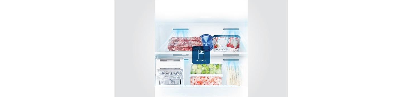 Power Freezer