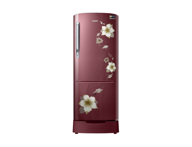 Best 230 litre single door fridge in India  sc 1 st  Samsung & Samsung 230 Litre 1 Door Refrigerator RR24M289YR2 | Samsung India