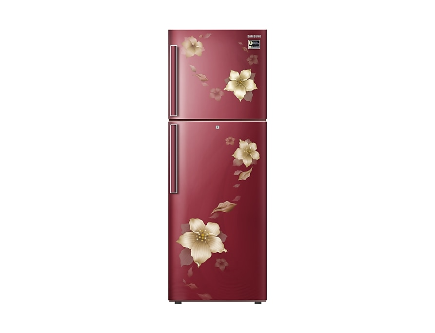 Samsung Fridge Double Door - 253 Litre RT28N3342R2