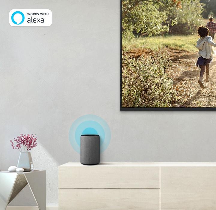 """Amazon Alexa"""
