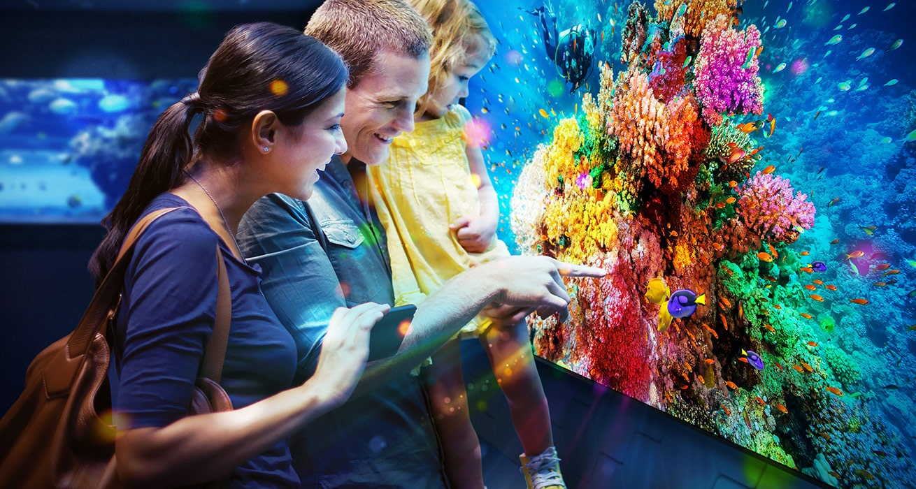 An image showing a family looking at a Samsung QHH display unit that is showing clear video footage of an underwater sea-scape.