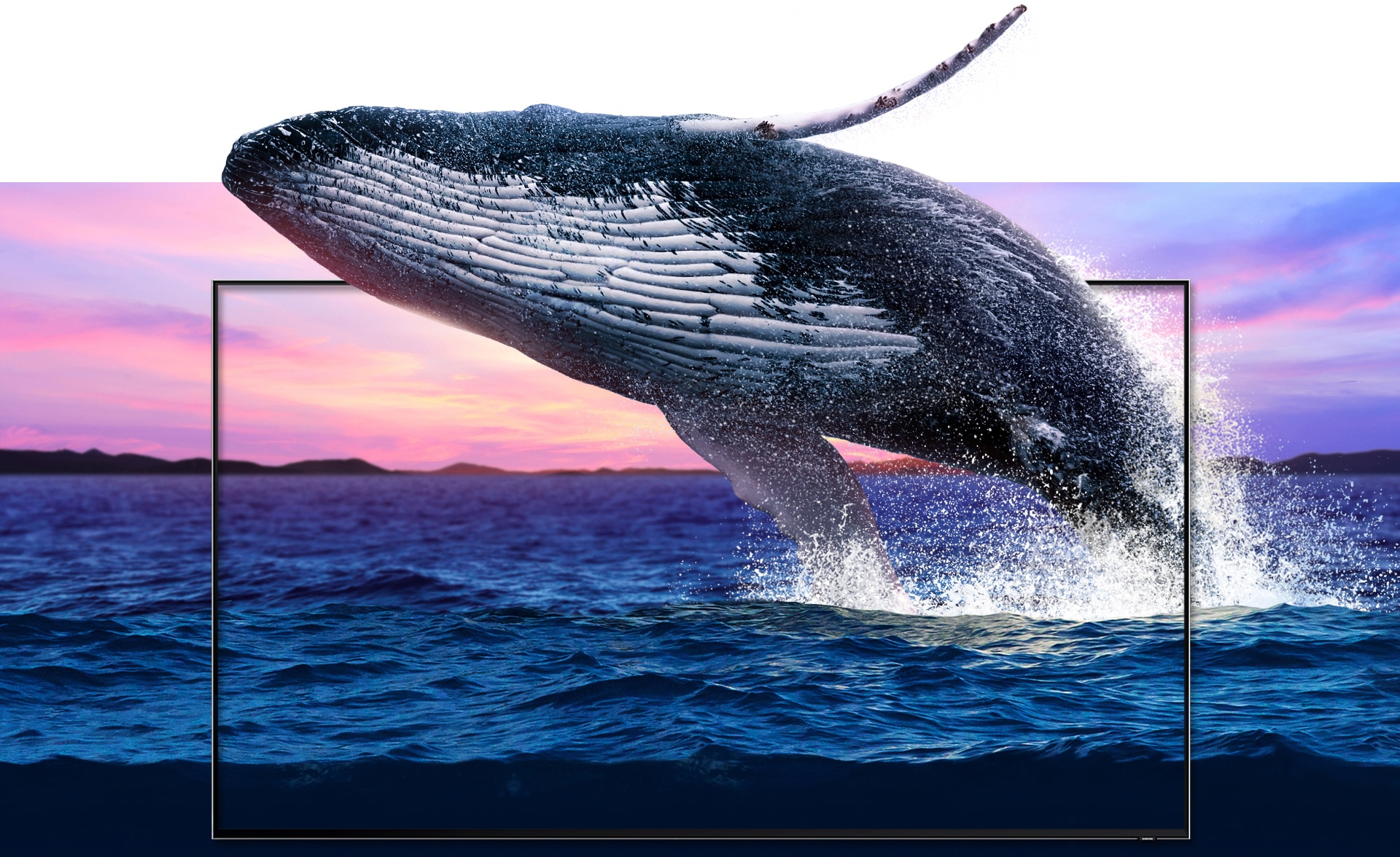 A vibrant seascape juxtaposed with a new QLED TV frame set in the middle, through which a large humpback whale leaps as it emerges from the ocean. The waves and details of the whale are shown in a detail equalling that of real life.