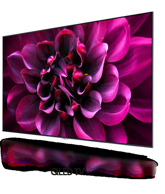 Una imagen de flor roja en la pantalla del QLED solo con un bisel se muestra.