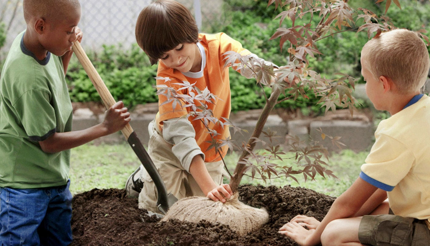 Three children are using teamwork to plant a young tree together. The Samsung Global Goals app allows everyone to participate in creating a brighter future.