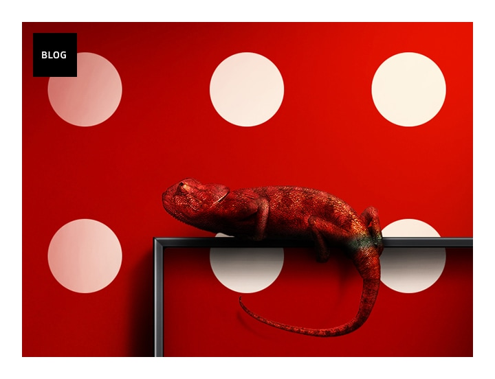 Samsung QLED TV with Ambient Mode mimicking the wall pattern behind the TV and a red chameleon camouflaged on the edge of the QLED TV