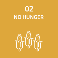 Representative image of SDG no hunger