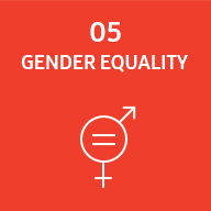 Representative image of SDG gender equality
