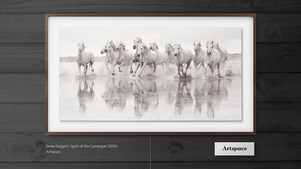 Samsung's The Frame displaying an art piece titled Spirit of the Camargue by Drew Doggett