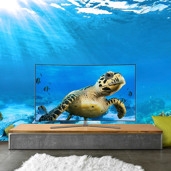 Samsung's QLED TV showing great details of underwater image with its 4K resolution