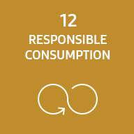 Representative image of SDG responsible consumption