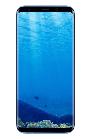 Front view of Galaxy S8+ in Coral Blue