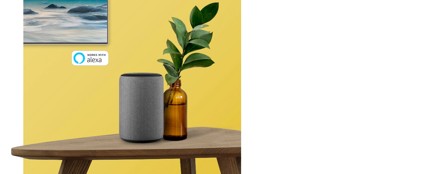 The Frame TV mounted on the wall.  A Google Assistant sits on a table next to a plant in  a broonze vase.