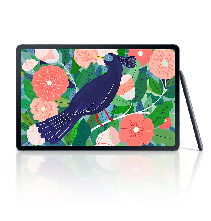Front view of Galaxy Tab S7+'s large display with a vivid illustration of a bird among leaves and flowers onscreen. An S Pen is propped against the tablet.