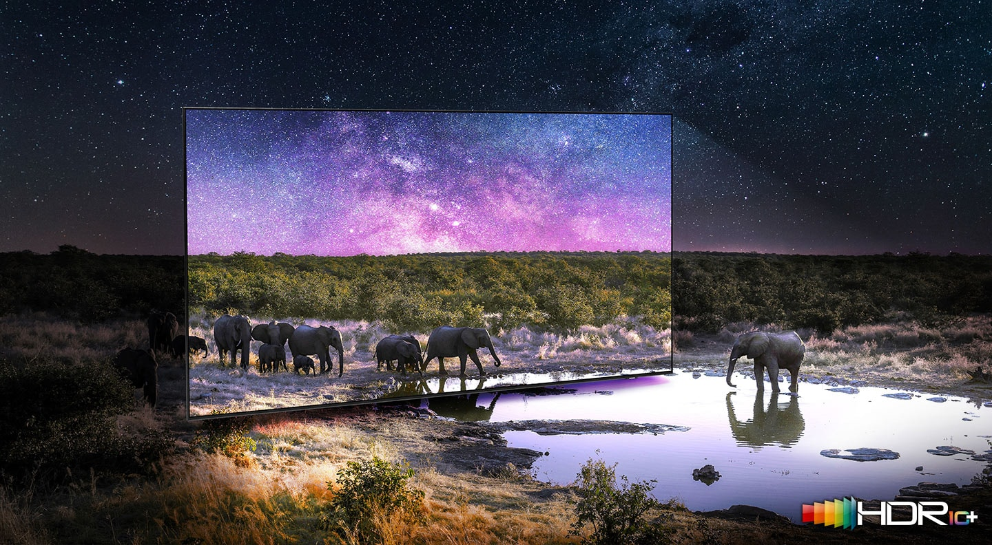 Elephants are walking around in a wide field surrounded by many stars and drinking water on the TV screen. QLED TV shows accurate representation of bright and dark colors by catching small details.