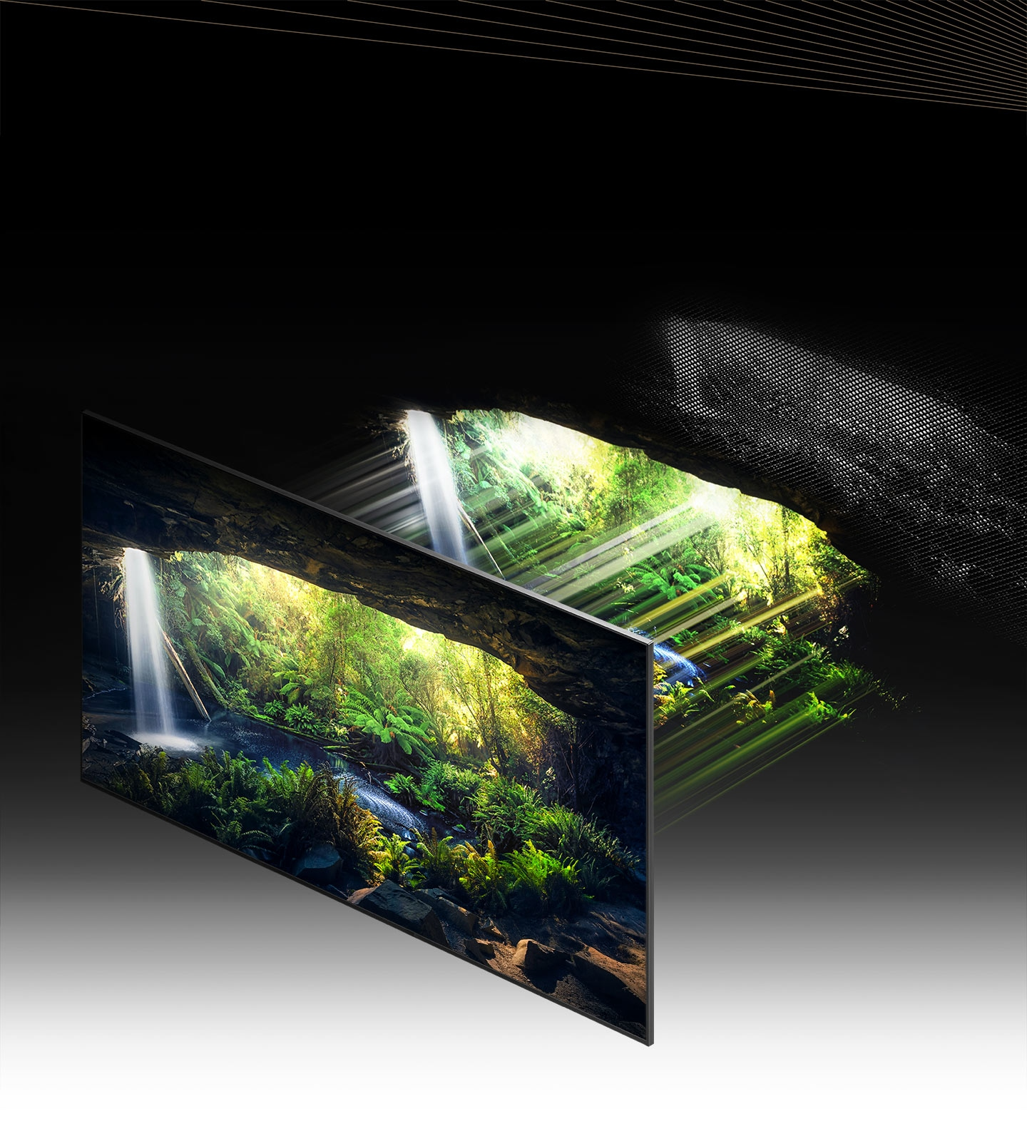 Through the Quantum Mini LED and microlayer, the beautiful forest screen seen from inside a cave is displayed in detail in bright and dark areas, showing very clearly.