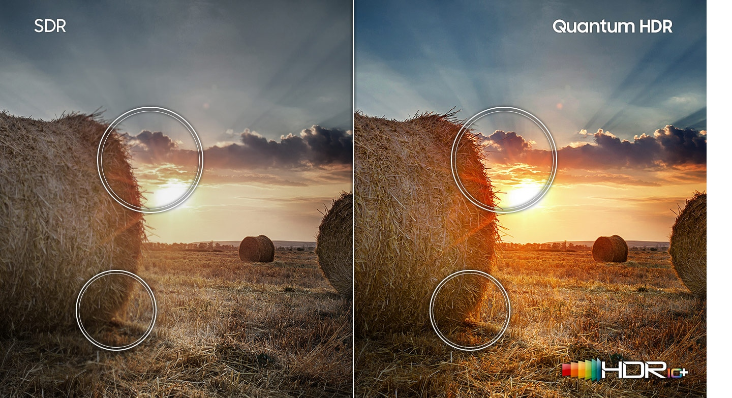 Compared to SDR technology, the sunset prairie image on the right which has HDR10+ logo shows a wider range of contrast created by Quantum HDR technology.