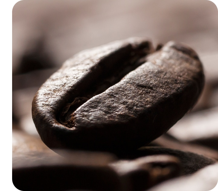 A close up of a coffee bean, showing tiny details including surface of bean clearly.