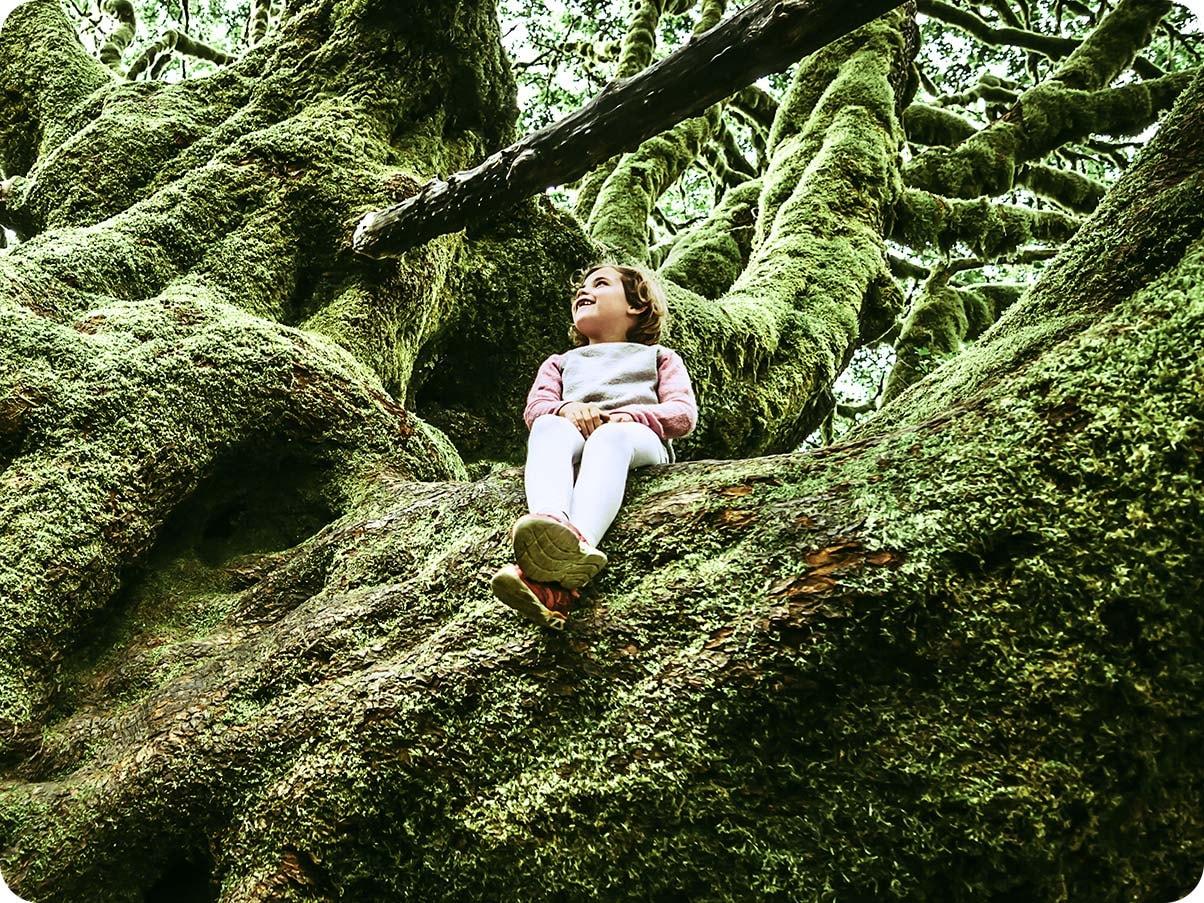 1. O fată așezată pe un copac mare, acoperit de mușchi. Este o fotografie prim-plan, care prezintă fata și centrul copacului.