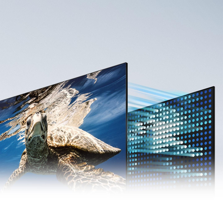 Najtemnejši odtenki črne barve in najsvetlejši odtenki bele barve z naborom LED na zaslonu