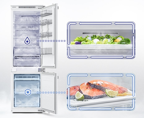 The BRB6000M's door opened.  Cool air with moisture keeps the salad in the refrigerator compartment cool and moist.  Cold air with moisture keeps salmon, lemons, and lime in the freezer fresh.