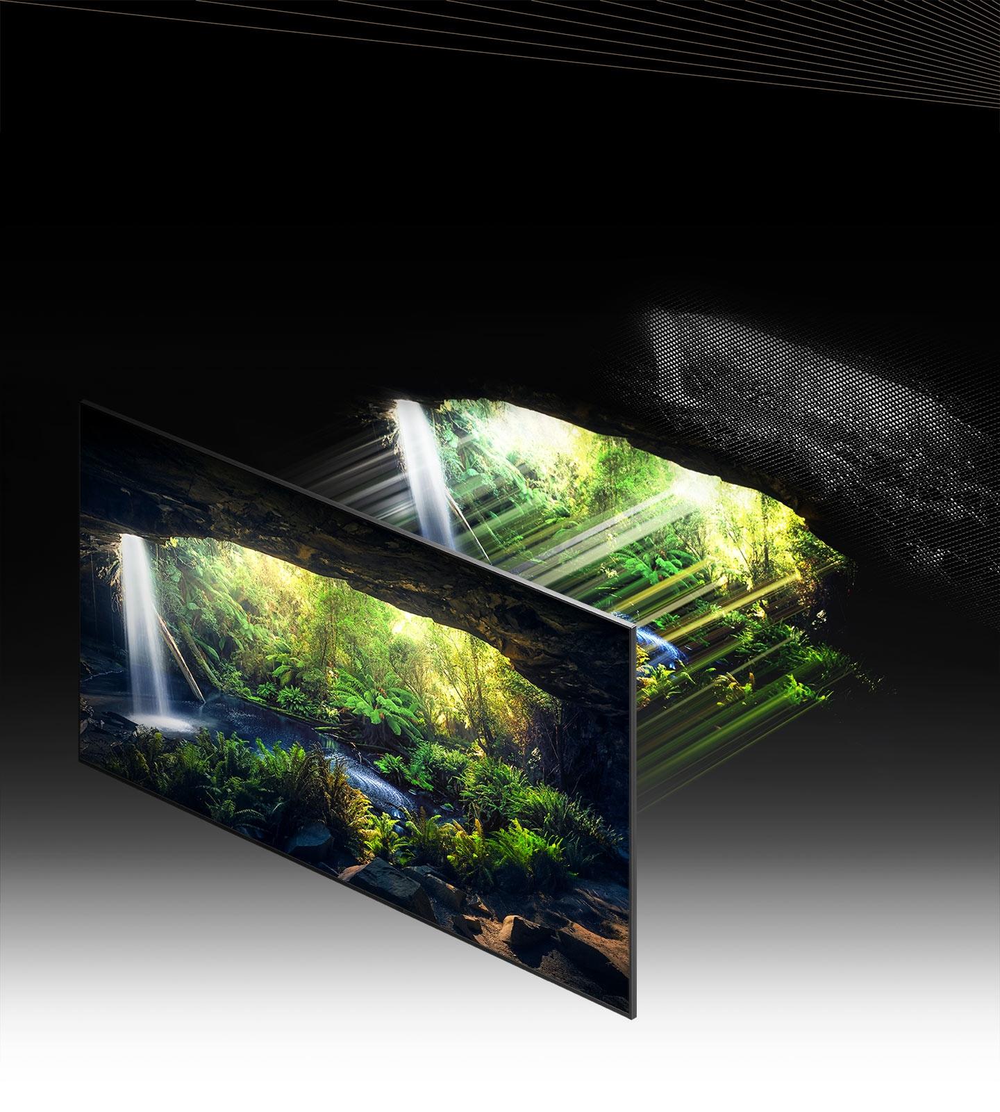 Thông qua Quantum Mini LED và microlayer, màn hình với phong cảnh rừng tuyệt đẹp nhìn từ bên trong hang động được hiển thị chi tiết, rõ ràng ở các vùng sáng và tối.