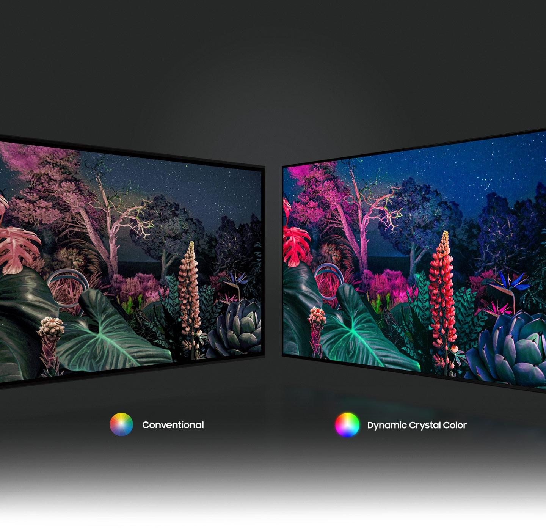 Hình ảnh khu rừng bên phải thể hiện hình ảnh có màu sắc phức tạp hơn so với công nghệ thông thường ở bên trái nhờ công nghệ Dynamic Crystal Color.