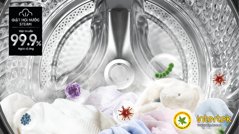 Giặt Hơi Nước Diệt Khuẩn Hygiene Steam