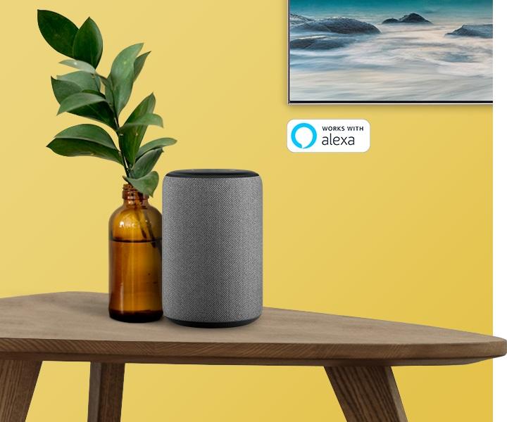 Works wth Amazon Alexa