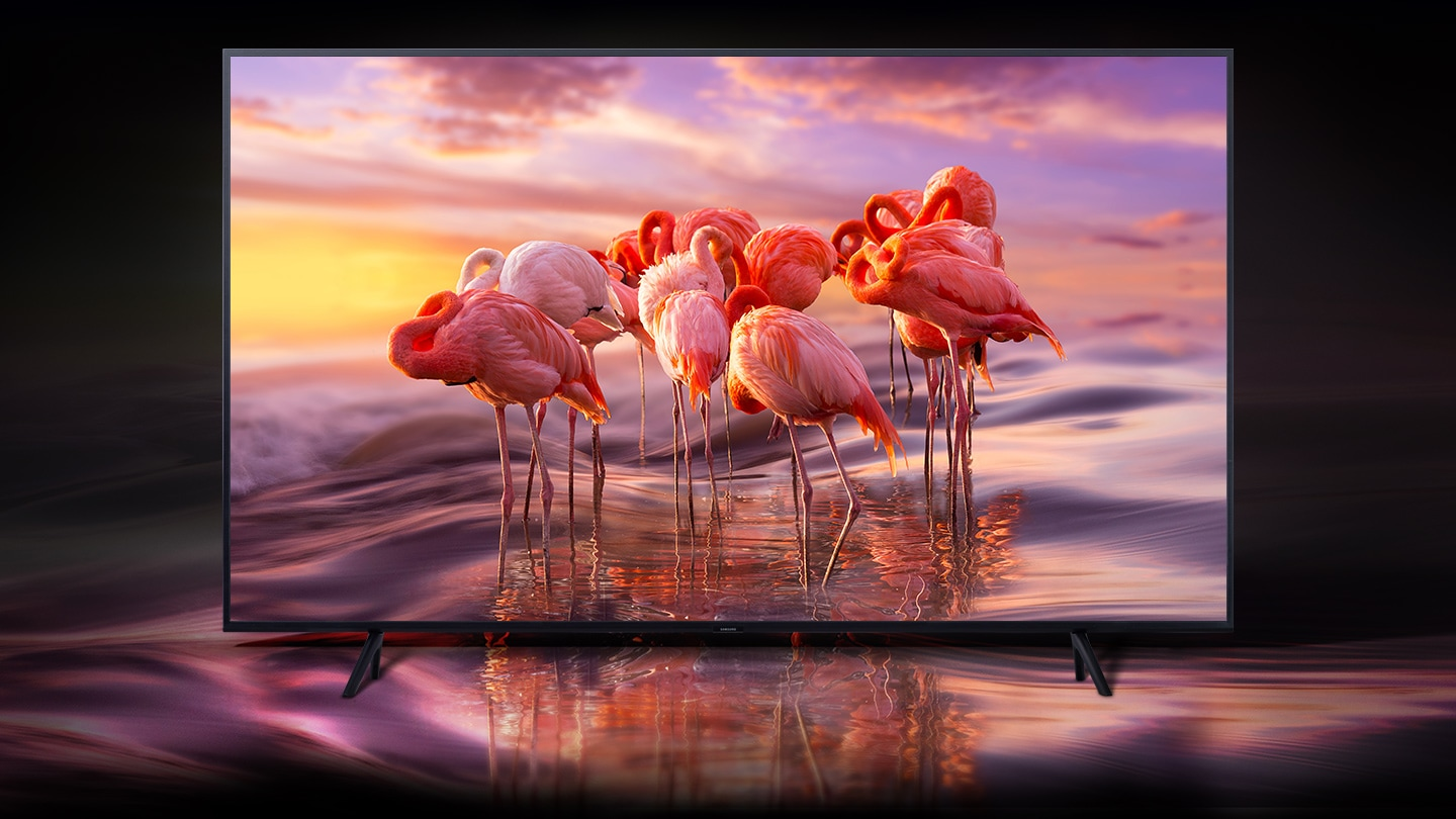https://images.samsung.com/is/image/samsung/pl-feature-qled-begins-at-reality-147376615?$FB_TYPE_A_JPG$