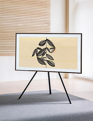 The Frame on a Studio Stand
