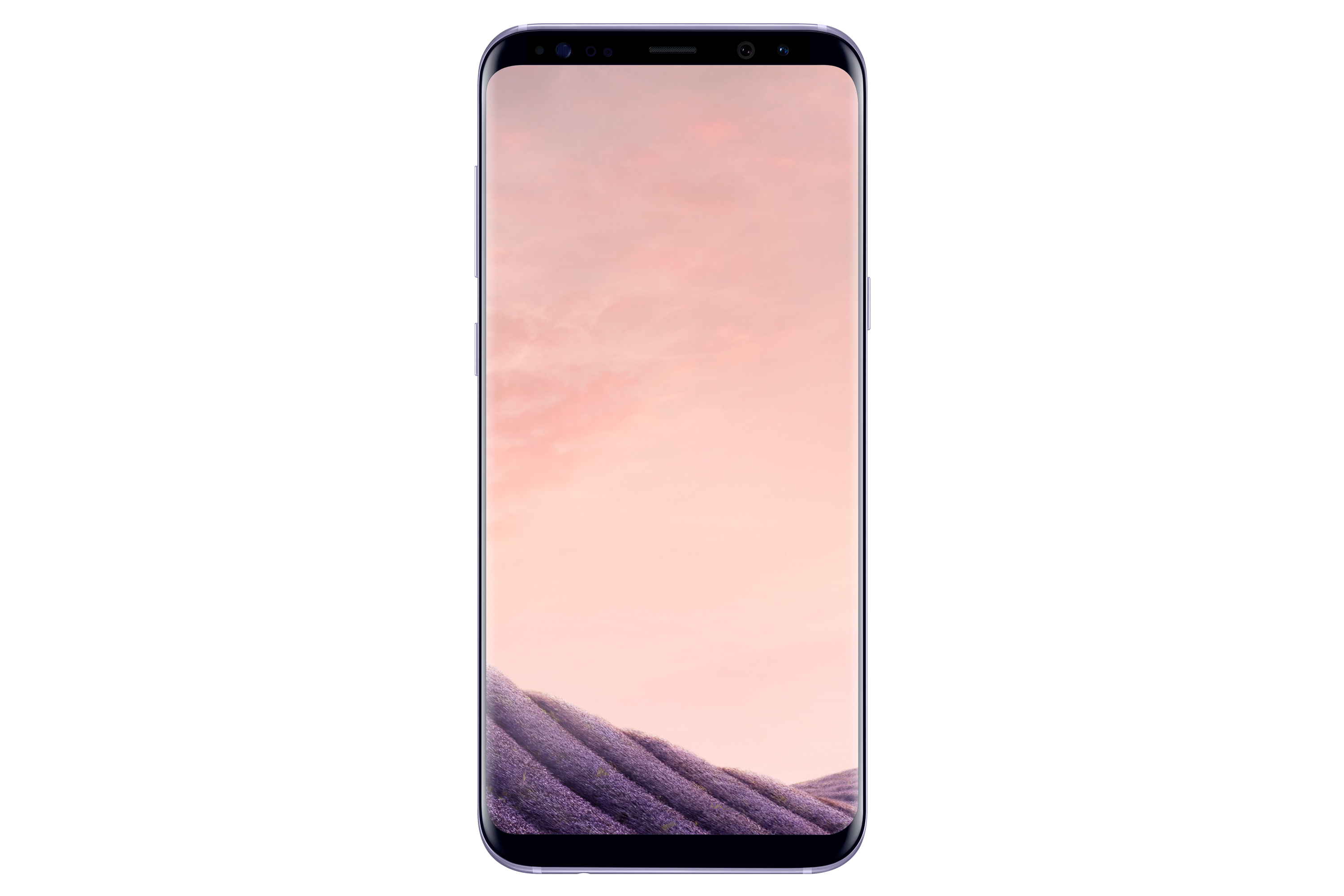 Galaxy S8+ (Orchid Gray)