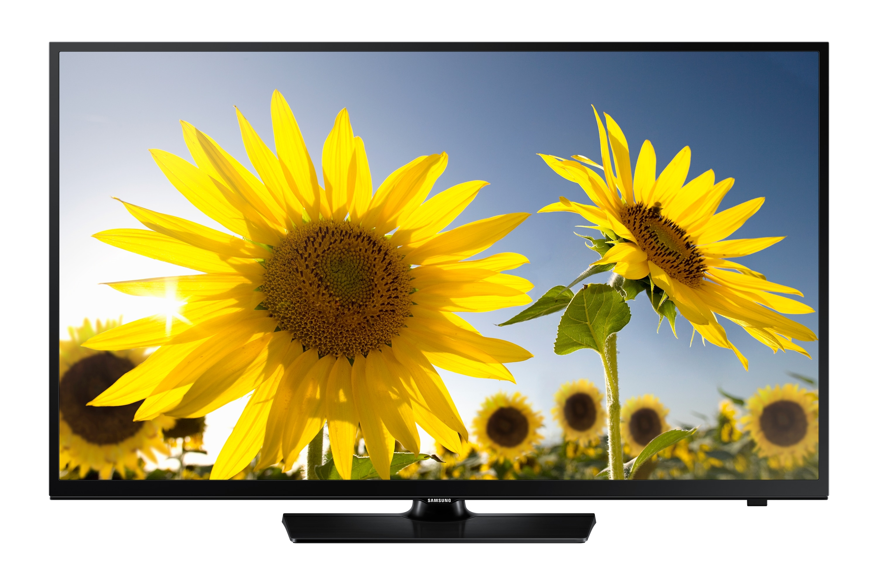 "48"" HD Flat TV H4200 Series 4"