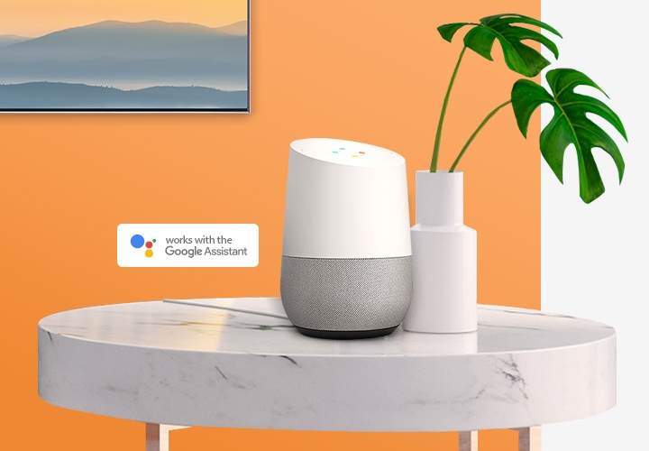 The Google Assistant