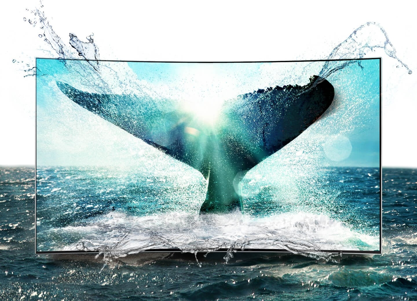 Bright and lively whale's tale image is on Samsung SUHD TV screen.